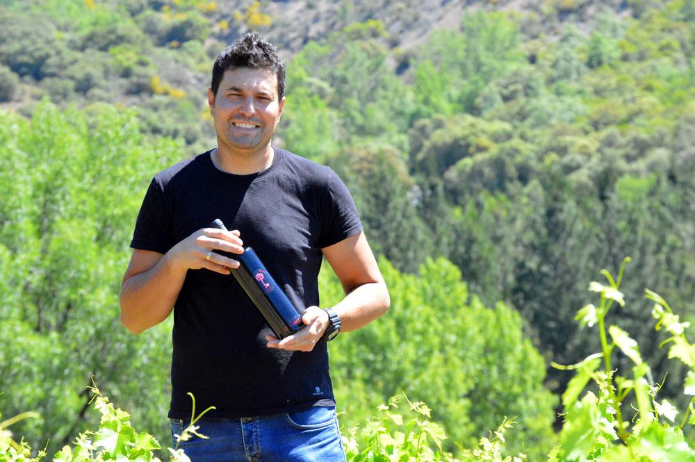 13 viñas julio calvo