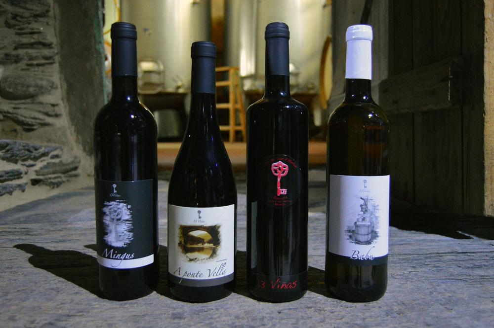 13 viñas