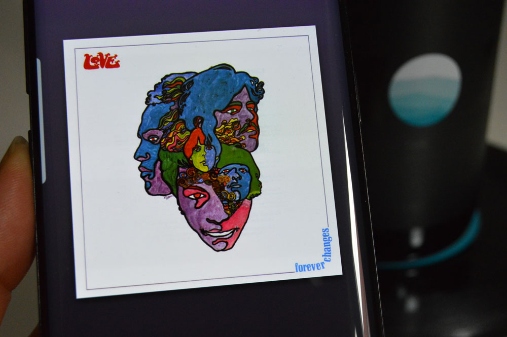 Love Lof Forever Changes