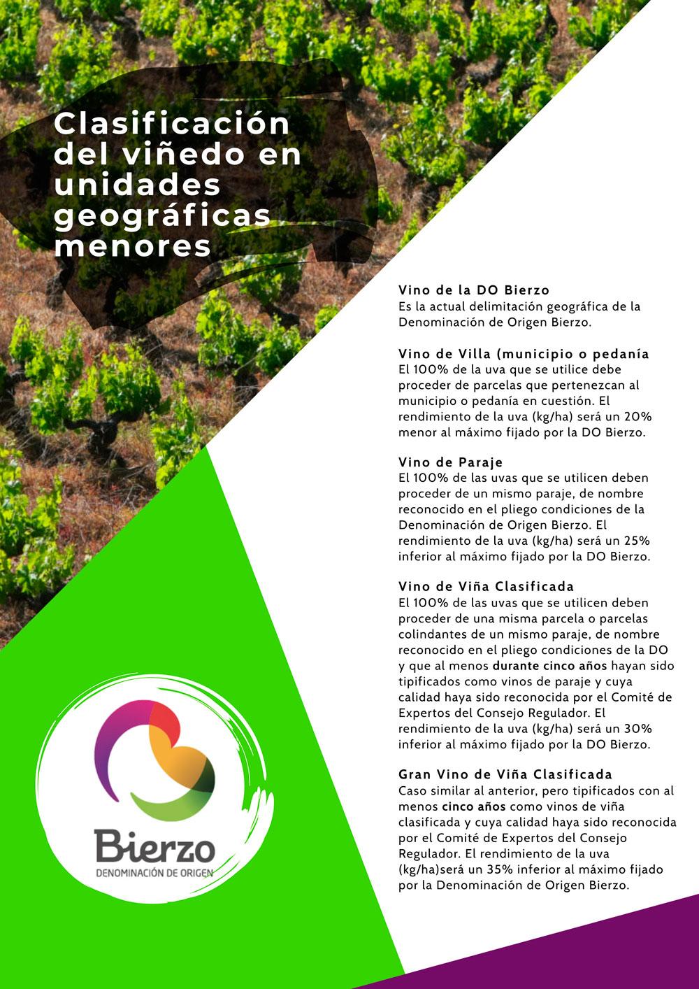 clasificación del viñedo